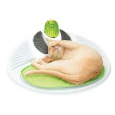Cat it Centro de massagem para gato