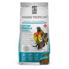Tropican Para Ninfas 820Grs [B2526]
