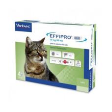 Effipro Duo Gato Cx 4Pip