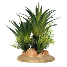 Decoração palmeira M