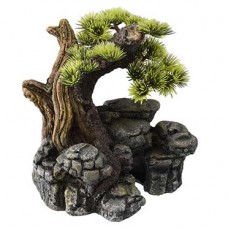 Decoração bonsai SM