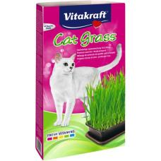 CAT GRASS HIERBA 120GR.
